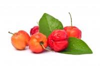 Extrakt Manufaktur_Product Icon_Acerola (Vitamin-C)_Frucht